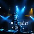 Animal-jazz-08