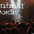 Animal-jazz-30