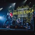 Metal-elka-017