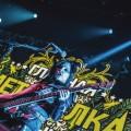 Metal-elka-020